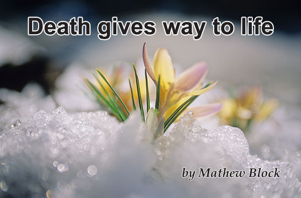 death-gives-way-to-life