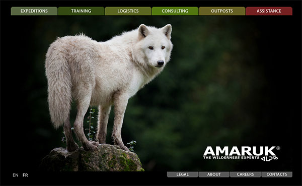A screen-shot of Amaruk's website.